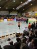 Rhein-Main-Baskets-Vizemeister-Bild3